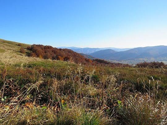Widok w stronę przełęczy Beskid.