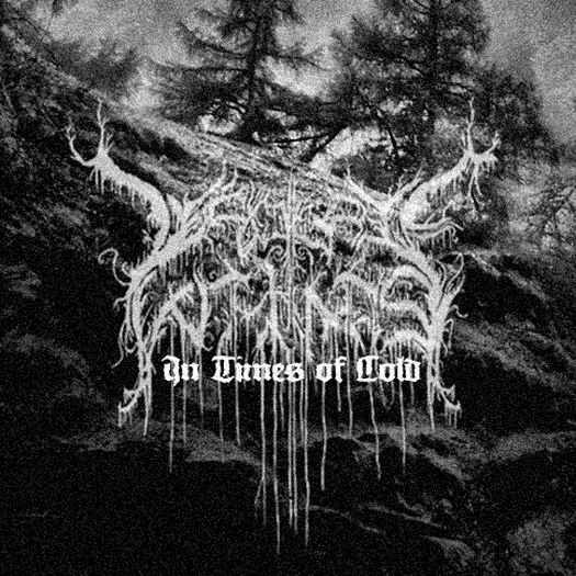 Metal Bandcamp: Desolate Winds - In Times of Cold