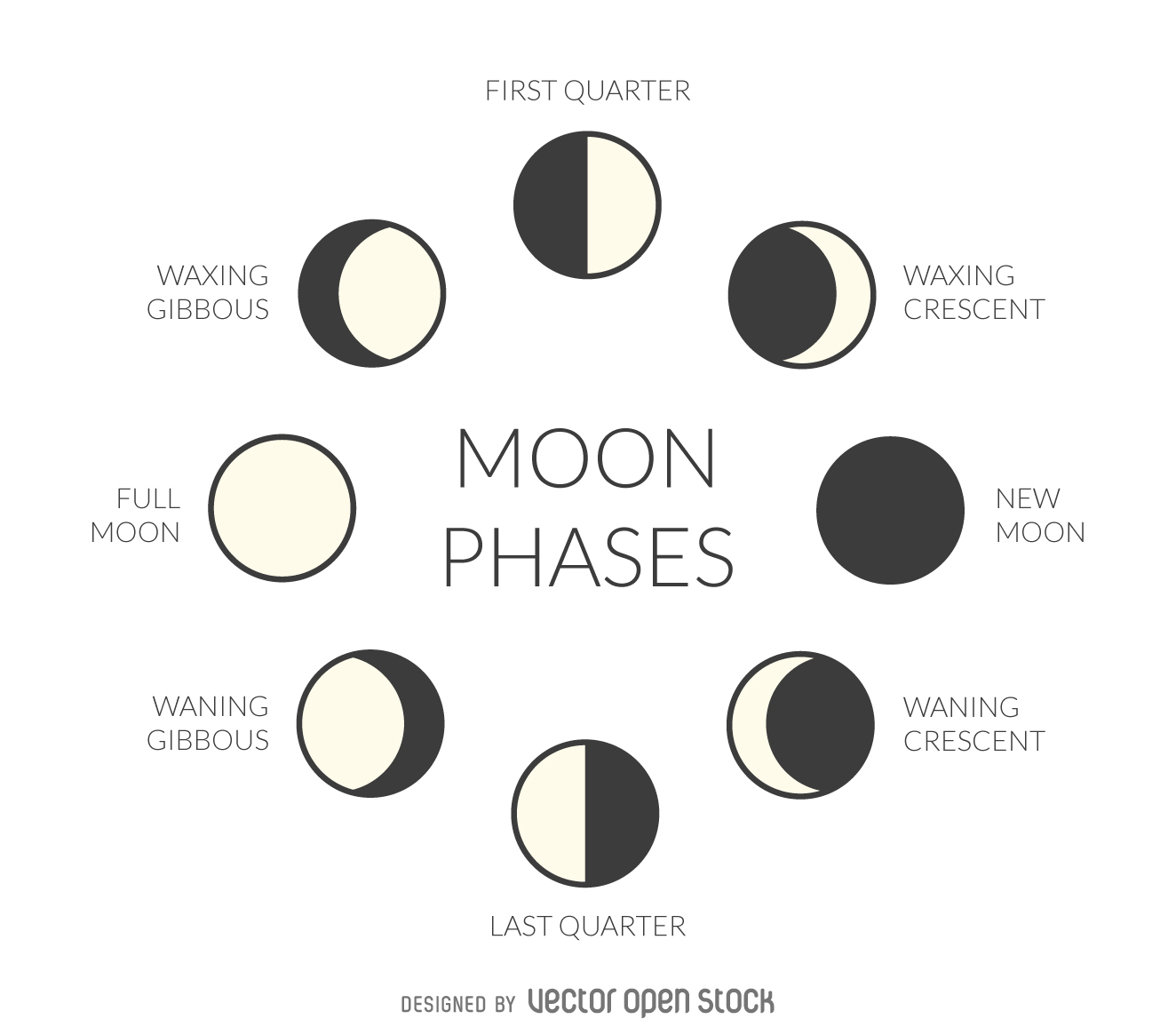 hight resolution of Spouting About 1st Grade: The phases of the Moon