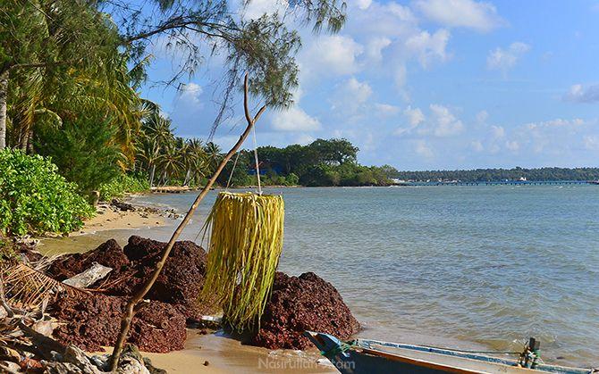 Tempat untuk meletakkan ketupat dan lepet di tepian pantai
