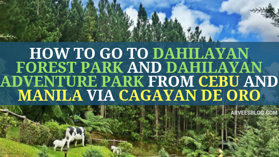 How to go to Dahilayan Forest Park and Dahilayan Adventure Park from Cebu and Manila via Cagayan de Oro City