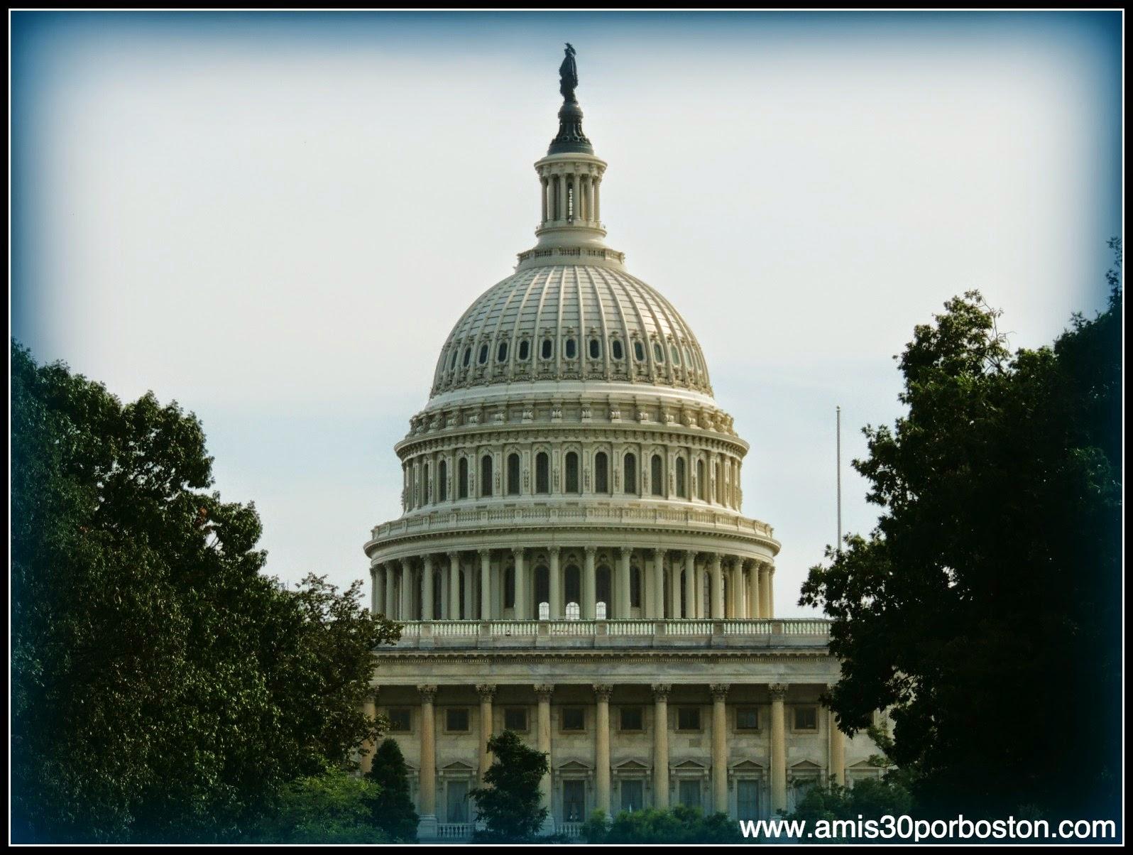 Capitolio de los Estados Unidos en el National Mall de Washington D.C.