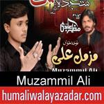 https://www.humaliwalyazadar.com/2018/09/muzammil-ali-noha-2019.html