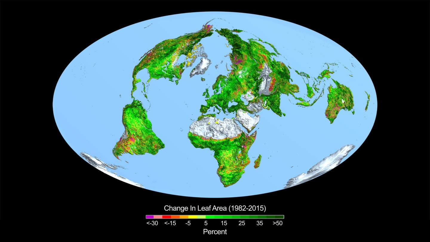 The change in leaf area across the globe from 1982 to 2015