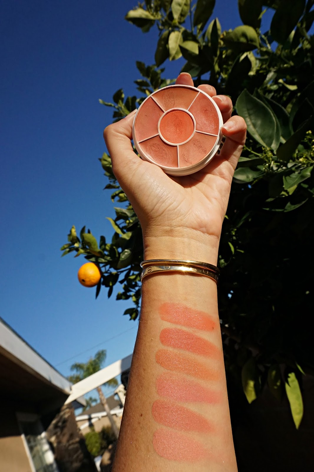 Ben Nye Creme Rouge Wheel in Natural Glow swatches