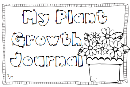 The Primary Techie: Plants, First Grade Time Lapse ...