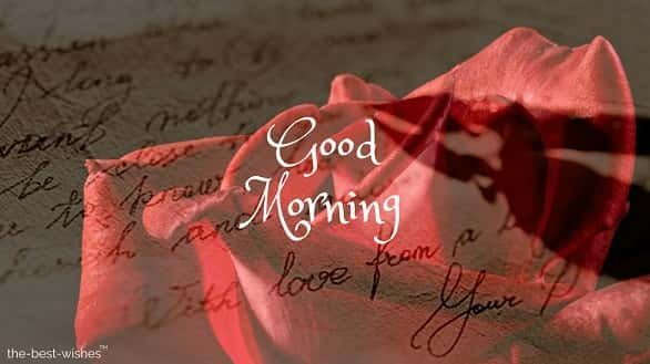 cool good morning pic with red rose