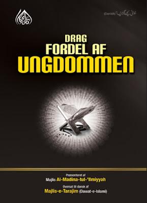 Download: Drag Fordel af Ungdommen pdf in Danish