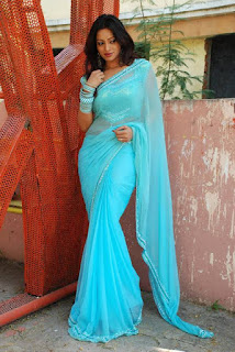 Udaya-Banu-gorgeous-blue-saree