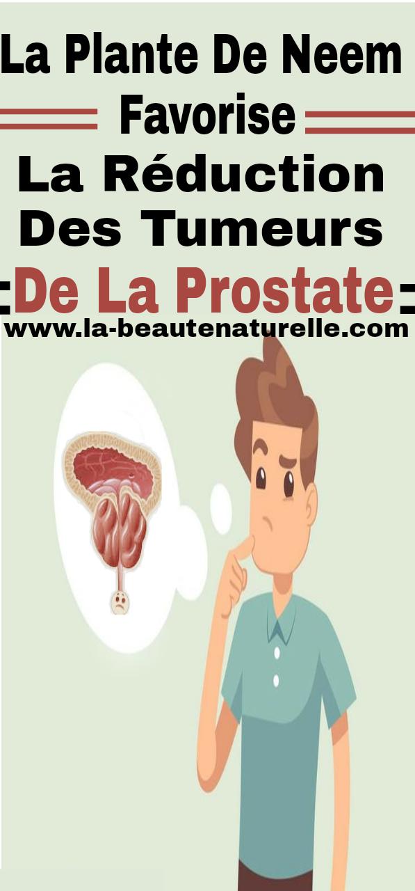 La plante de Neem favorise la réduction des tumeurs de la prostate