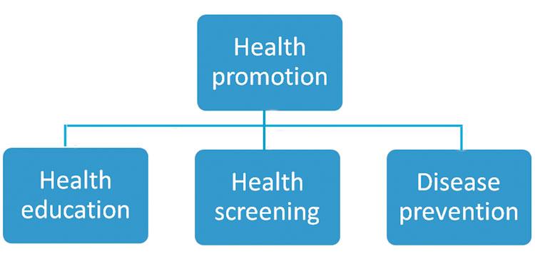 Definisi Promosi Kesehatan Education Articles