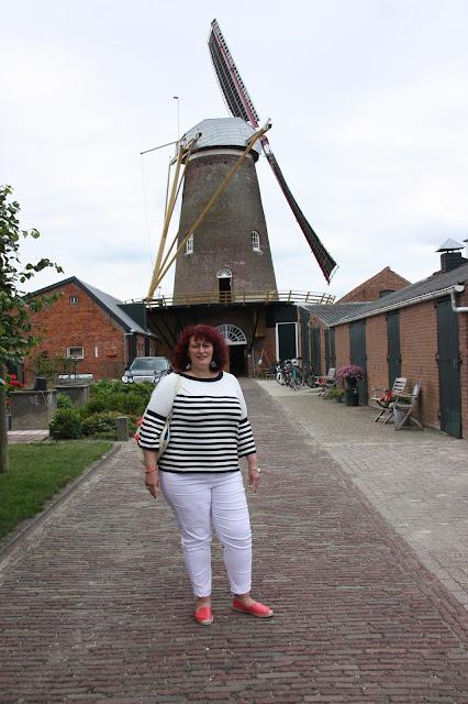 Mühle Molen Ee Graanhalm Gapinge Zeeland