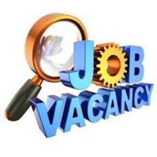 10,000 peluang kerja untuk para graduan | Jawatan Kosong Kerajaan 2016