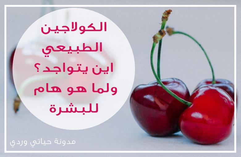 الكولاجين الطبيعي فوائد الكولاجين للبشرة