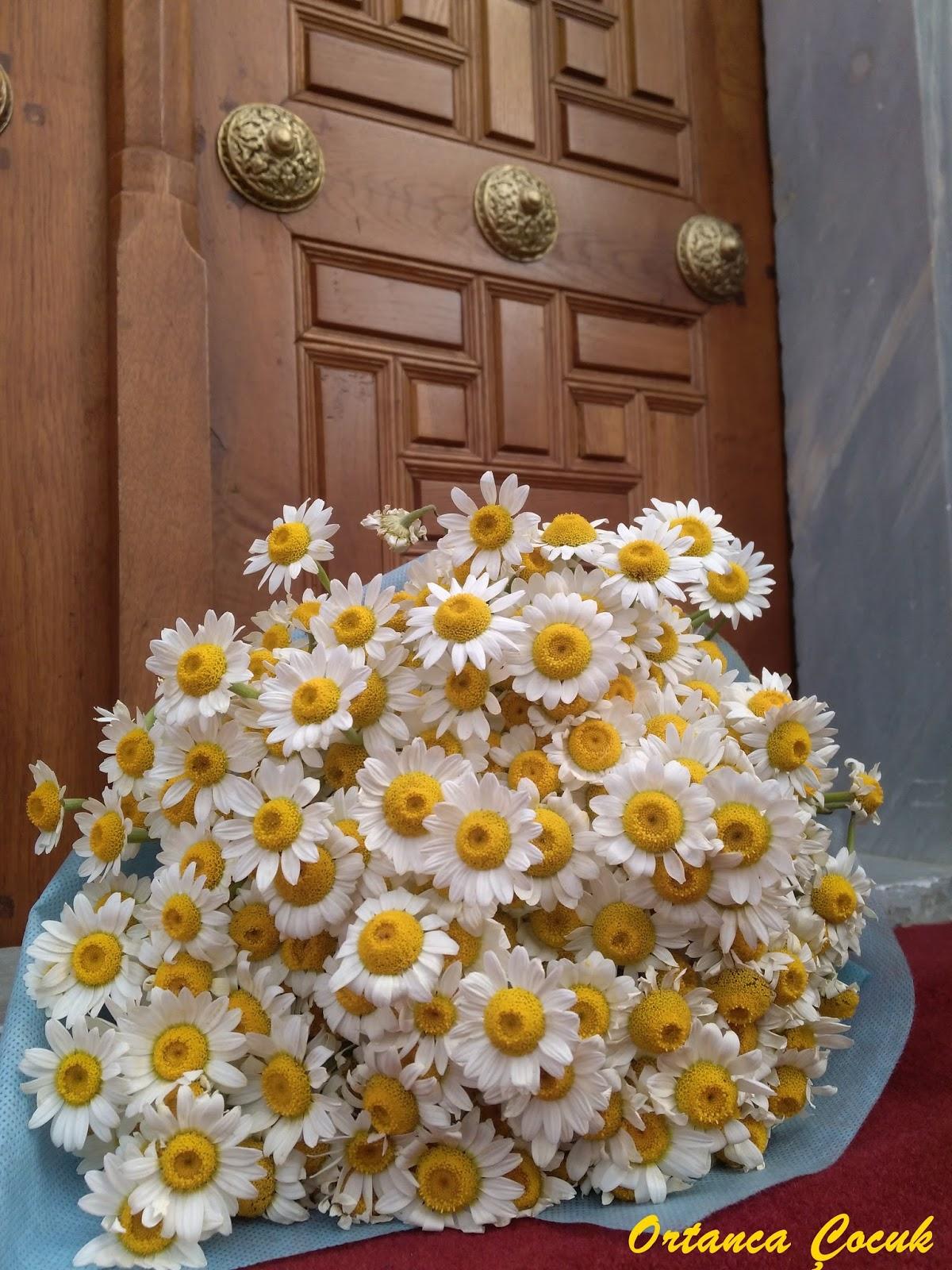 Ben de kızımın çiçek vermesini isterim