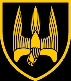 нарукавний знак 46 окремий батальйон СпП Донбас-Україна