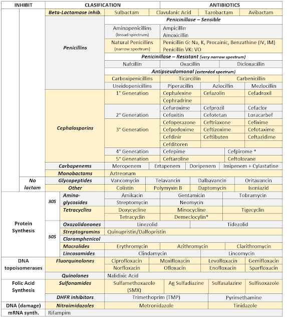 Antibiotics Summary
