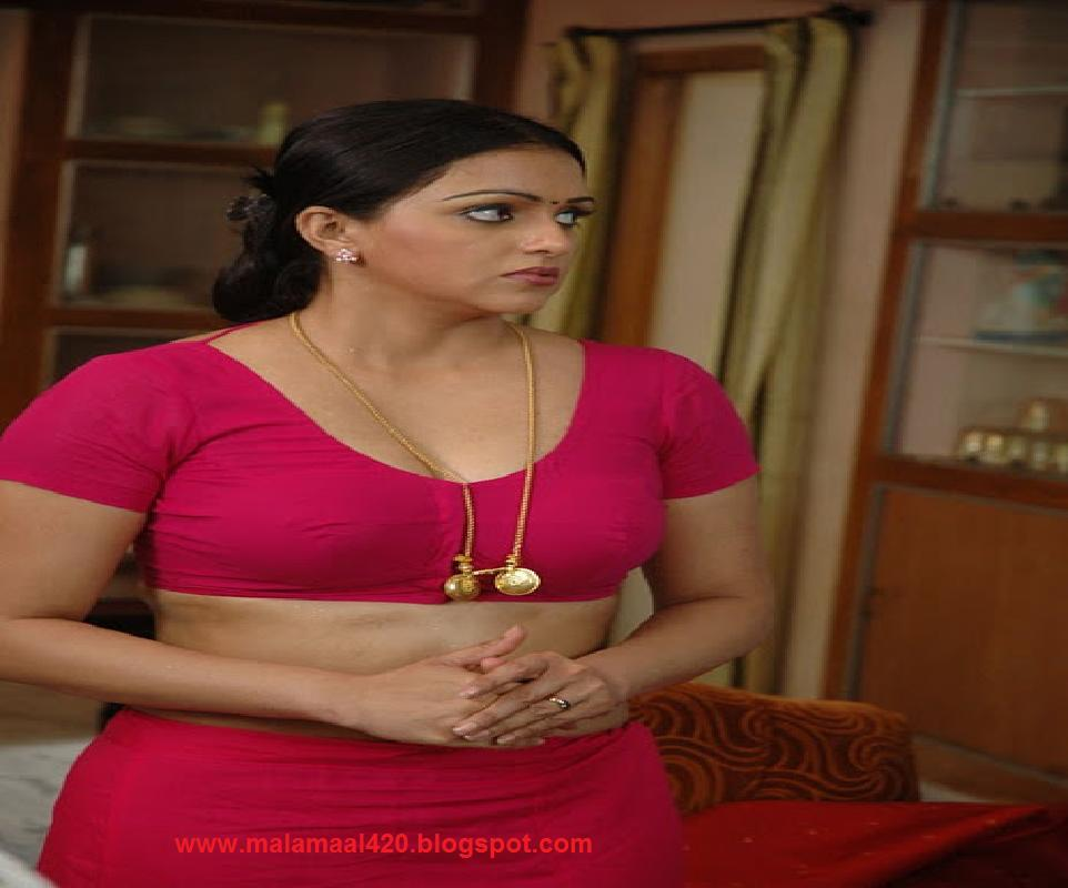 Sonali Joshi Mallu Bhabhi Hot In Red Blouse Hot Images -9762