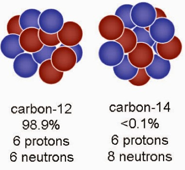 carbon 12 and 14 dating measures