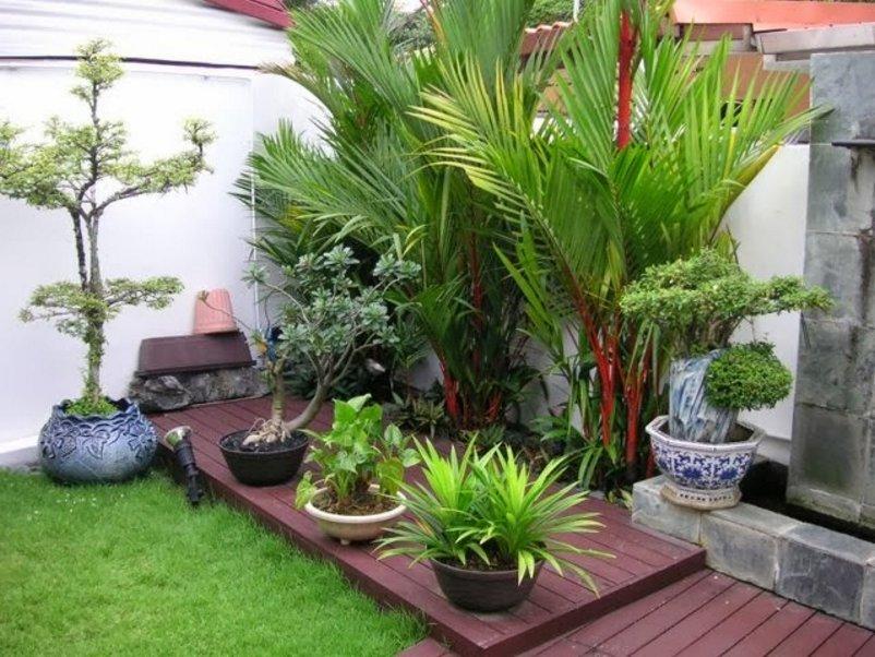 taman rumah kecil terlihat minimalis
