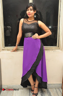 Telugu Actress Rachana Smith Stills at Money is Honey Audio Release  0044.jpg