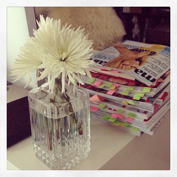 desk, flowers, magazines