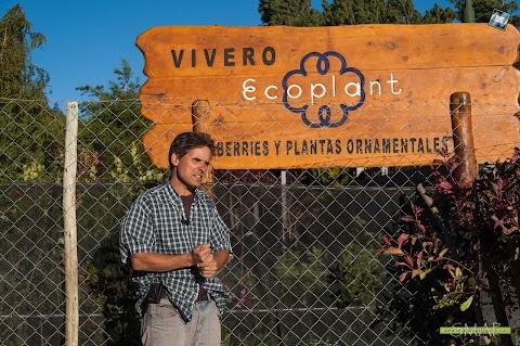 Jardines y Huertas: hoy, algo de lo que te ofrecemos en Vivero Ecoplant