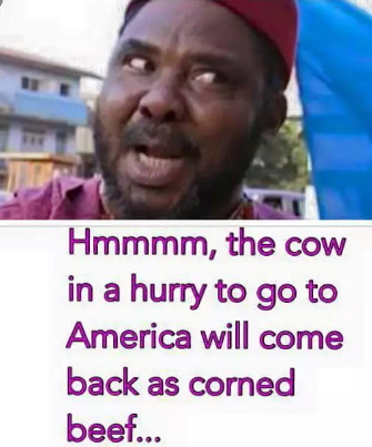 pete edochie funny quotes