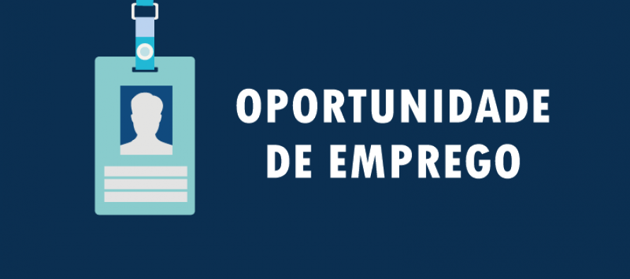 Image result for oportunidade profissional