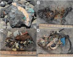 Είναι απολιθώματα ευρετηρίου που χρησιμοποιούνται για ιστοσελίδες γνωριμιών για τους άνδρες