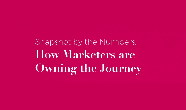 Snapshot by the Numbers: How Marketers are Owning the Journey