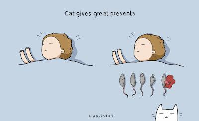 Paylaşmayı-Seven-Kedi