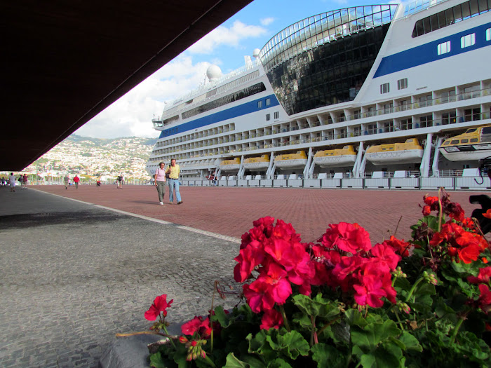 flowers to AIDAsol cruise ship in north terminal