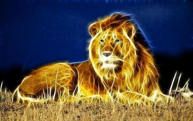 pin lion hd 3 - photo #30