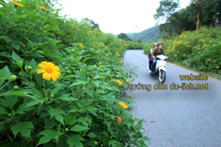 Đi bằng xe máy tiện hơn, ngắm cảnh đẹp hơn, đến nhiều chỗ hơn