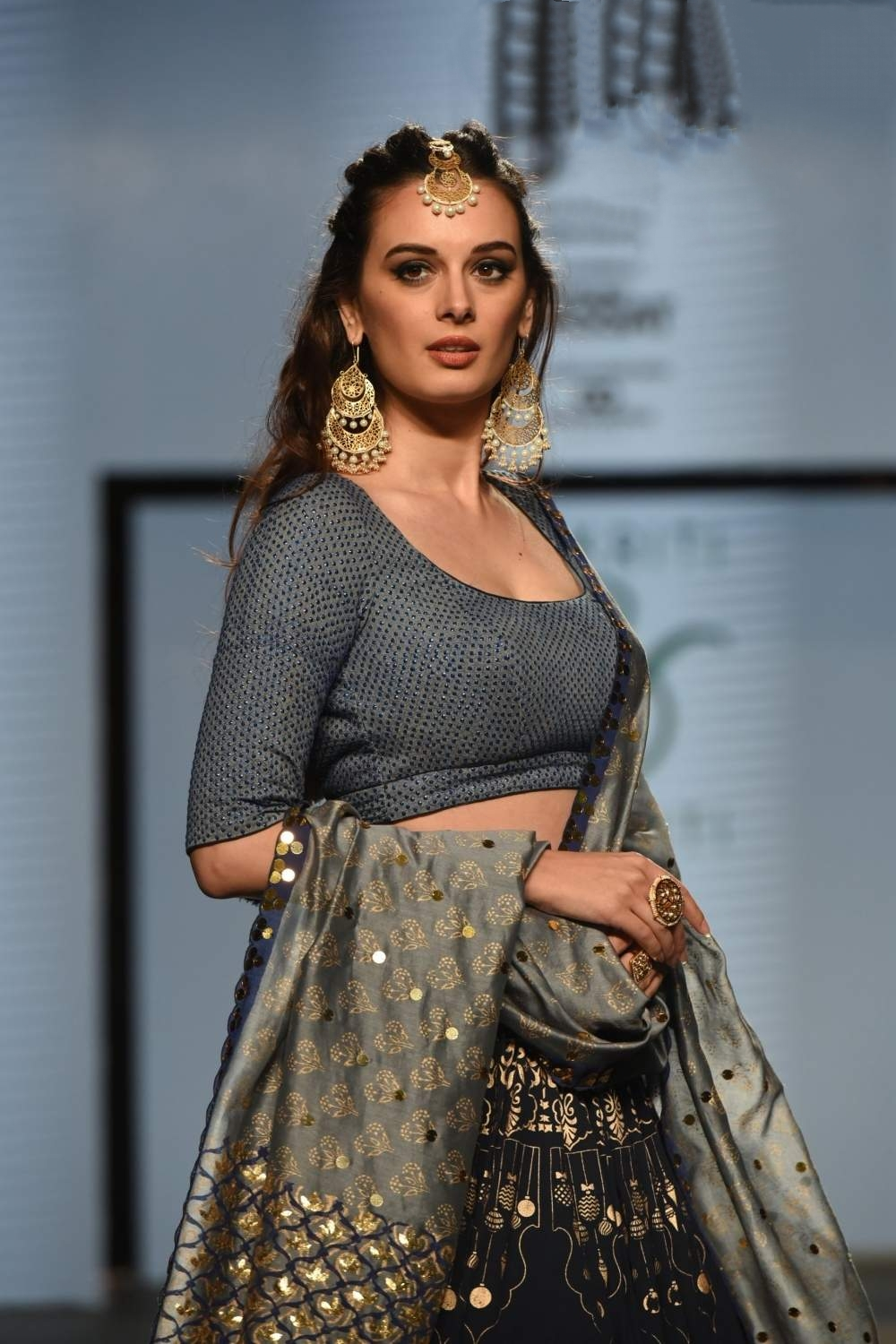 Evelyn Sharma in saaho