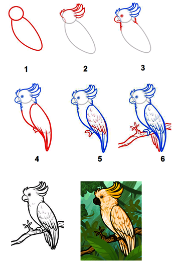 AB: Menggambar flora fauna dan alam benda (secara sederhana)