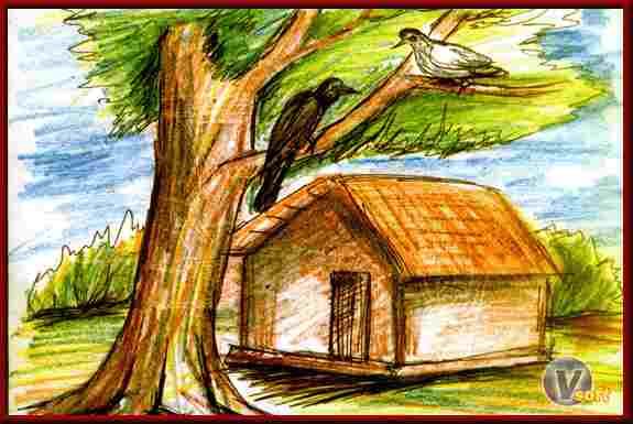 कबूतर और कौवा