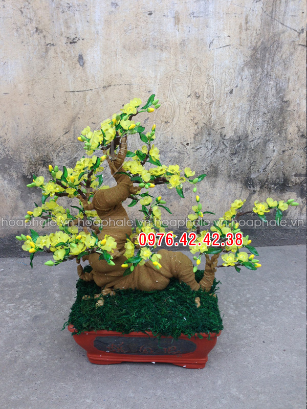 Goc bonsai cay hoa mai the rong tai Nguyen Van Huyen
