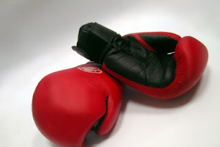 le Fitness boxing