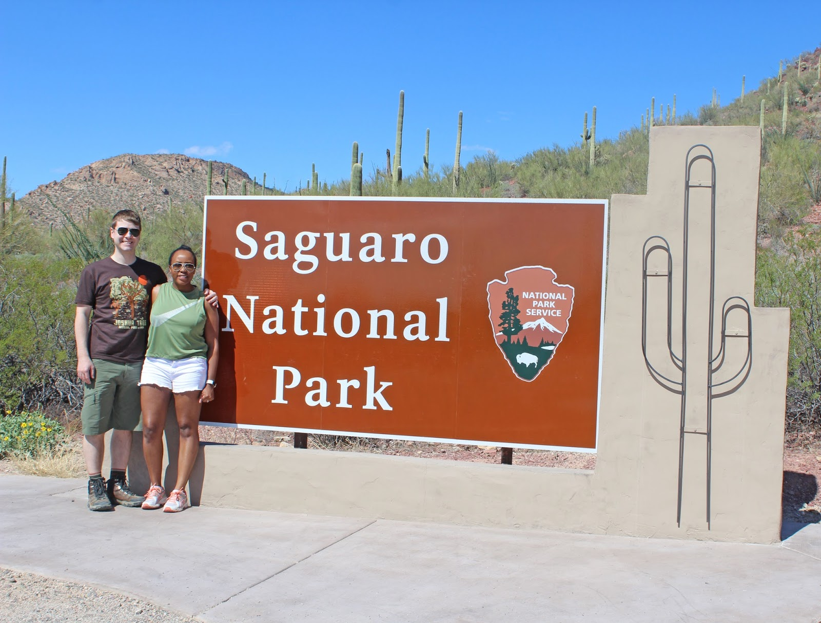 saguaro national park day trip 5