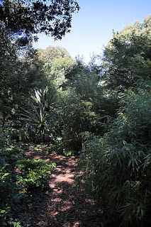 Trentham Garden