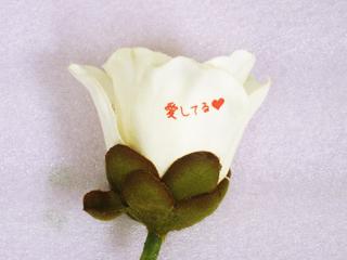 白いバラ(造花)にメッセージを印刷の写真