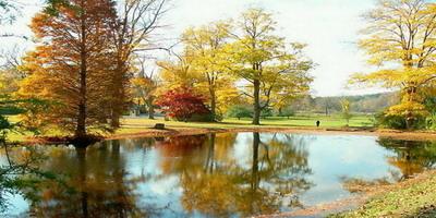 Hai mùa thu Đà lạt