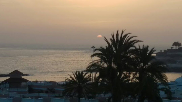 The sun sets over the ocean, turning the water and sky a soft orange colour and silhouetting a cluster of palm trees