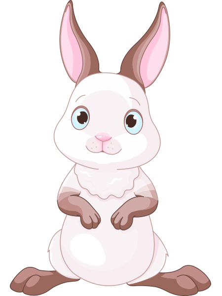Adorable Rabbit