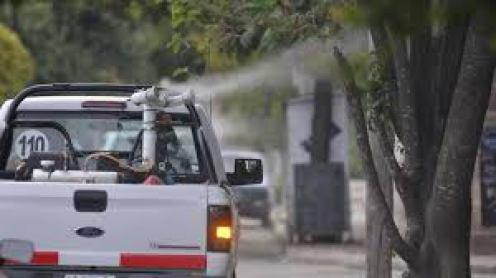 REGIONALES   Capitán Sarmiento: fumigarán por los mosquitos en la ciudad