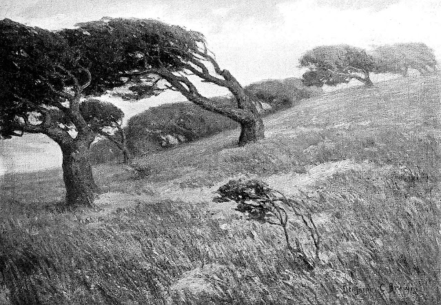 Benjamin C Brown art 1911, windy landscape