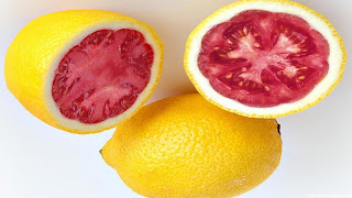 Lemato fruit image wallpaper