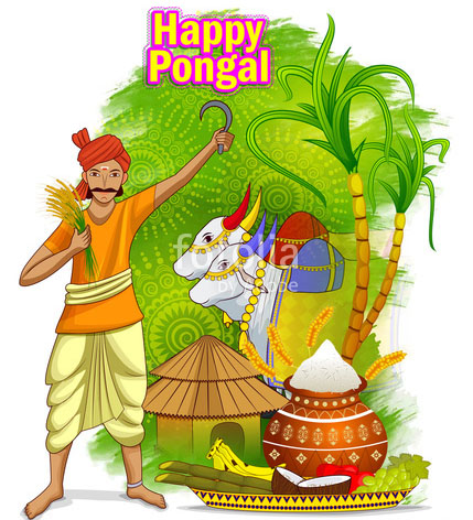 Happy Pongal Cards And Photos
